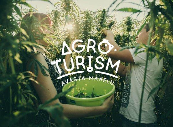 Agroturism.ee veebileht
