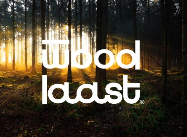 Woodlaast.ee veebileht